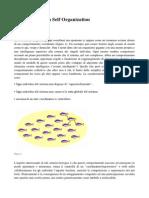 Tematiche Self Organization - SON