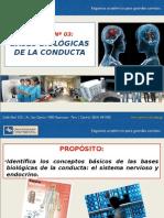 3ra Semana - Bases Biológicas Psicología