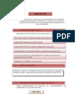 Analisis y Descripcion de Gerente de Desarrollo