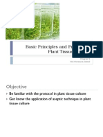 Basic principles and protocol in plant tissue culture