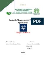 Proiect MFA , Turism