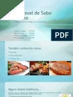Biodisesel de Sebo Bovino.pdf