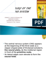 Embryology of the Nervous System