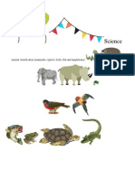 Mammalogy syllabus mammals morphometrics technology activity plan fandeluxe Choice Image