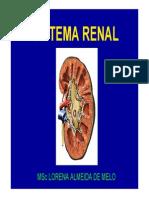 Fisiologiahumana6 Sistemarenal 140304202851 Phpapp01