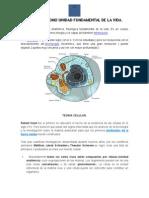 8.-La Celula Como Unidad Fundamental de La Vida Bio 1