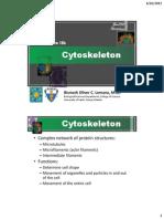 L2b - Cytoskeleton.pdf