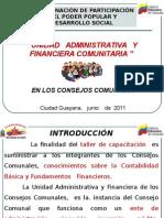 contabilidad de los consejos comunales