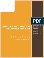 Degeneracion Mixomatosa Valvular, Grupo 3