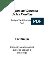 Derecho Patrimonial Familiar - Principios del Derecho de Las Familias Perú