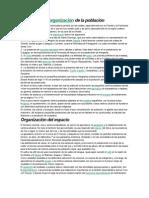 Distribución y.docx