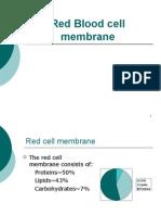 RBC Membrane Mazen