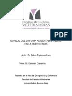 Manejo Del Linfoma Alimentario Felino en La Emergencia