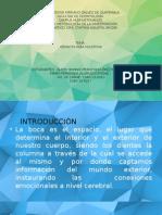Odontología Holística (Investigaciòn en Metodología)