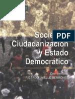 Sociedad ciudadanizacion y estado democratico