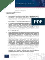 Informe Auditado AIB 2011