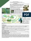 EL ECOSISTEMA (Factores Bioticos y Abioticos)