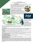 EL ECOSISTEMA Factores Bioticos y Abioticos
