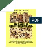 Pedro Marangoni - Mini Manual de Sobrevivência No Brasil