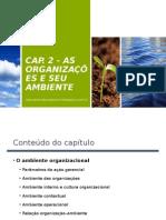 As organizações e seus ambientes