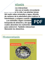 CLASE 01 Homeostasis