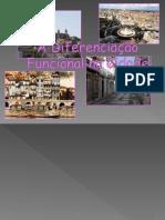 A Diferenciação Funcional Na Cidade