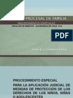 4_DerechoProcesalFamilia_ProcedimientosEspeciales