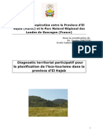 Rapport-Diagnostic-territorial.pdf