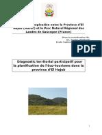Rapport-Diagnostic-territorial.pdf