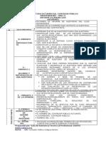 Estructura Dictamen Del Contador Público Independiente