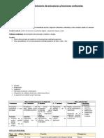 Desarrollo Embrionario de Estructuras y Funciones Orofaciales