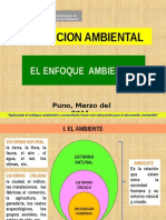Enfoque Ambiental en El Sistema Educativo - Carabaya