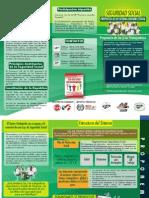 Trifolio CS 6.pdf