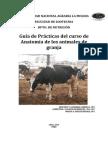 Guía de Practica de Anatomía 2014 Practica 1