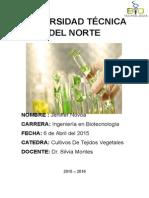 Informe Uno.docx
