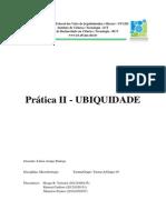 Ubiquidade-2