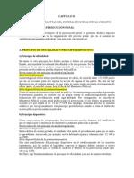 Capitulo II Principios y Garantias