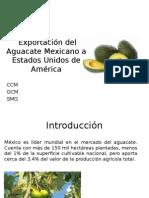 Exportación Del Aguacate Mexicano a Estados Unidos
