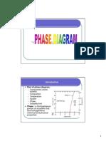 13 Phase Diagram