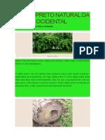 Sabão Preto Natural Da África Ocidental