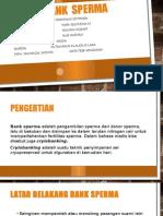 Bank  sperma.pptx