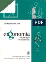 Ergonomia y Lumbalgias Ocupacionales