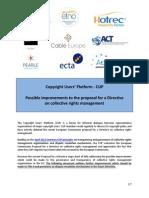 20130318_CUP_Common concerns CRM Directive.pdf