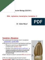 DNA, replication,transcription, translation-2.pdf