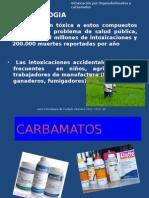 CARBAMATOS