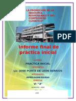 Informe Final de Practica Inicial