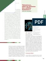 ms_cancer_rufer03.pdf