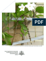 Descripcion Proyecto Fachadas Vegetales