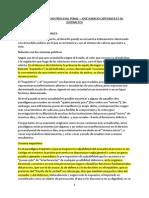 CAFFERATA, Jose Ignacio - Manual de Derecho Procesal