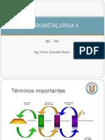 Hidrometalurgia_SX_09042015.pdf